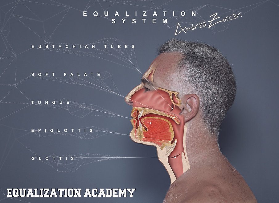 Equalization System.jpg