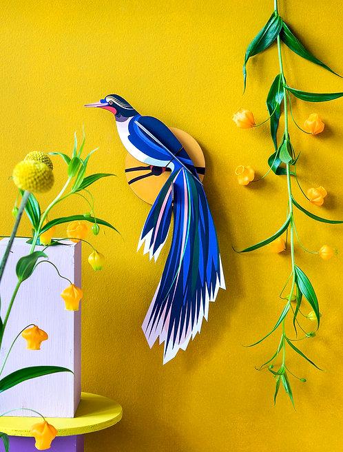 Studio Roof - PARADISE BIRD, FLORES