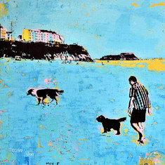 Tenby Summer Dog Walk