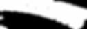racedays logo utan text.png