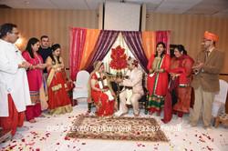 WEDDING  702