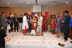 WEDDING  541