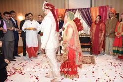 WEDDING  559