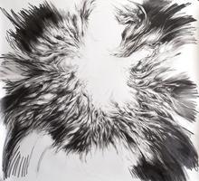 "Virgil No. 01, 2014, Graphite on paper, 53"" x 51"""