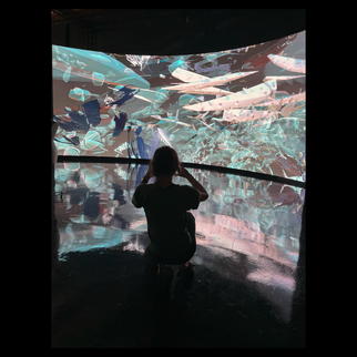 Exhilarating time spent playing with immersion/reflection on the stunning LEDs at Standard Vision