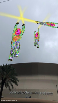 Dawn DeDeaux, ACID FROG SEARCH AND RESCUE: THE NEW ORLEANS SUPERDOME, 2019