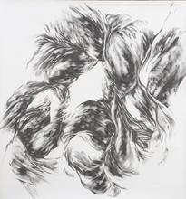 "Virgil No. 36, 2015, Graphite on paper, 55""x 55"""