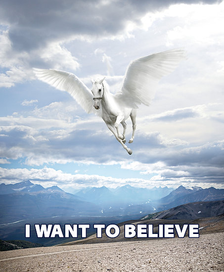 I Want To Believe, Pegasus Wall Decor, Pegasus Poster Digital Download