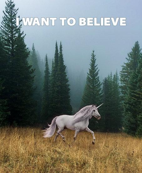 I Want To Believe Fairy Unicorn Poster, Unicorn Wall Decor Digital Download