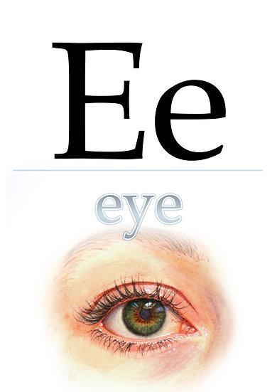 "Letter ""E"", Printable Flash Cards, English Alphabet for Kids Digital Download"