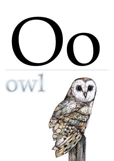 """Letter """"O"""", Printable Flash Cards, English Alphabet for Kids Digital Download"""