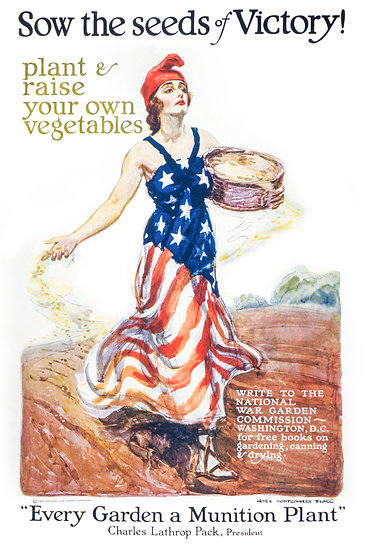 """WW1 US War Garden Commission Poster """"Sow the Seeds of Victory"""" Digital Download"""