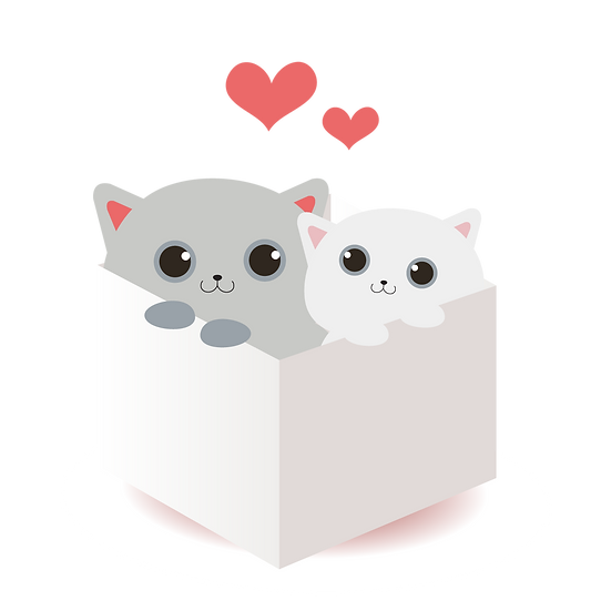 Lovely Cats in the Box - Valentine's Day PNG Transparent Image, Instant Download