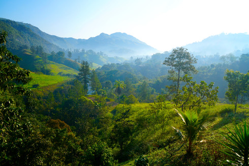 LANQUIN | Guatemala