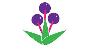 eAVMtbPbSjVA6qcP4DgR_Grow-Elderberries-Leaf.jpg