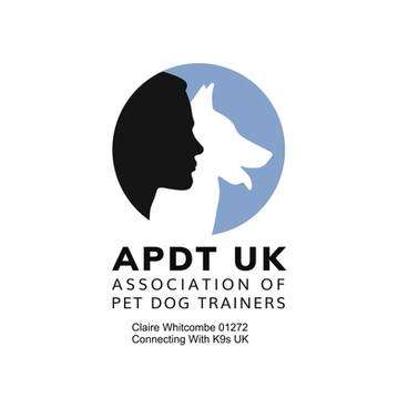APDT Logo 01272.jpg