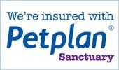 petplan logo.jpg