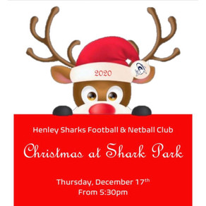Christmas at Shark Park