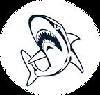 HS Logo #2.png