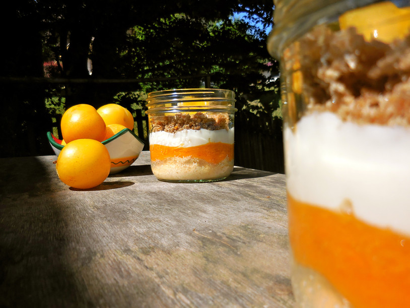 Sunlight d'abricots et de prunes jaunes [VGTR]
