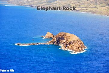 Elephant Rock Molokai