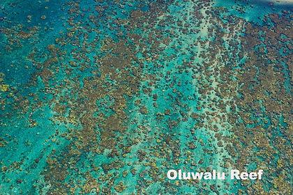 Oluwalu Reef