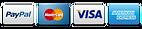 logos pay.png