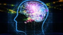 Neuroplasticidad, ¿Qué es?