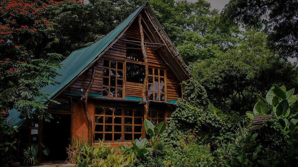the_lodge_kapishya_hot_springs.jpg
