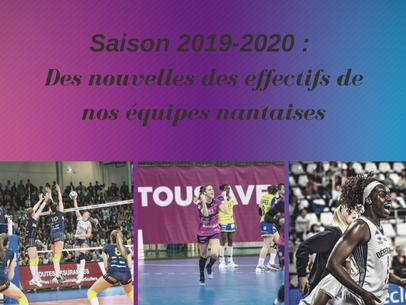 Saison 2019-2020 : Des nouvelles des effectifs de nos équipes nantaises