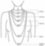 necklace-length_Fit_chart_large.jpg