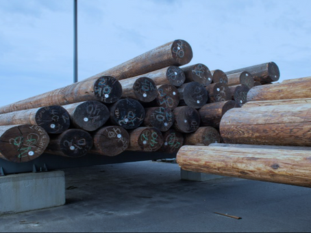 Safety Topic: Loading Wood Poles