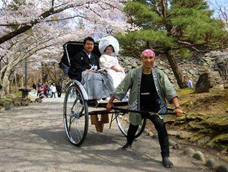 桜の下の花嫁さん