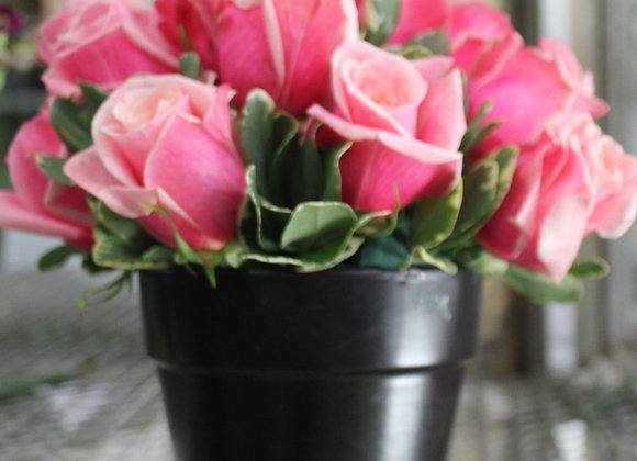 """Rosas en un """"pot"""""""