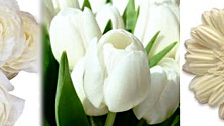 Tendencias florales para 2017