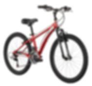 Children Bike Rental