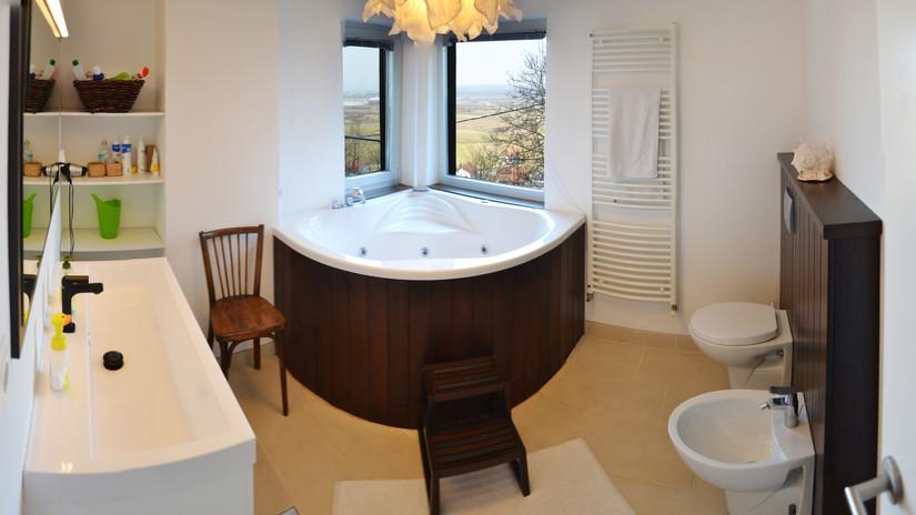 VP17-bathroom2-1.jpg