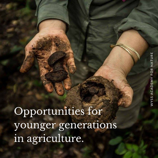 In all of our Hub regions (LatAm, Europe, East Africa and SEA), the younger generation is less and less interested in pursuing a profession in agriculture. That's why it is important for the Wyss Academy For Nature to play a role in changing the perspective on the agriculture sector in terms of job opportunities for young people. The right governance structures with the righ incentives need to be put in place together with communicating those convincingly to the next generation of agricultural professionals.