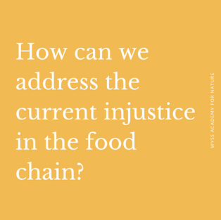 Let's rethink the food system. How do we move from an agriculture policy to a food and nutrition policy? To affect change, the entire food system needs to be looked at. This includes farmers, consumers, producers, researchers and many more, who are all linked together as elements within a complex food system. To navigate this complexity, developing innovation from the bottom-up and connecting stakeholders with land-use systems will be key. There is a clear need for knowledge of local institutions and local governments, for the application of local technologies as well as the inclusion of local groups. We must also build capacities for advocacy and policy engagement among stakeholders. On a policy level, pricing must incorporate externalities from environmental and social impacts caused in the value chain.
