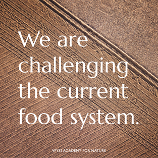 On 25 May 2021, the Wyss Academy embarked on a journey together with food system experts from Latin America, Europe, East Africa and Southeast Asia - of challenging the current food system, and demonstrating pathways towards a new system that is more sustainable and just.   With input from renowned researchers, the Wyss Academy Declaration was developed. It addresses the most pressing topics identified by food experts, namely:   - that we must promote opportunities for youth within the food system, - that we make nature-positive and just food production a reality,  - and that we must bridge the disconnect between consumers and producers, and move towards fairer food supply chains.