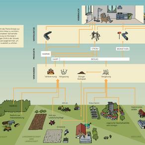 Effiziente Nutzung der Biomassenpotenziale für die Energieproduktion