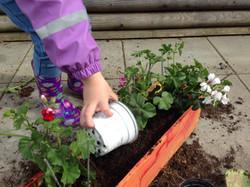 kita gross und klein Pflanzen