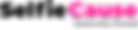 Logo-SC-color1_2x NEW.png