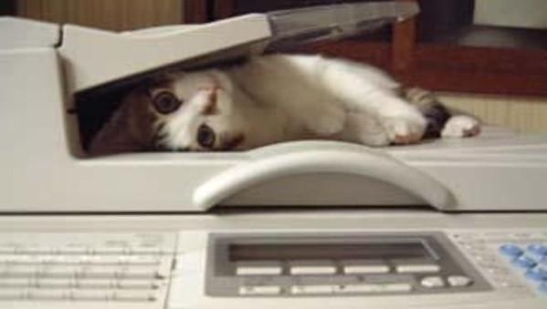Отключите факс