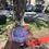 Thumbnail: Purple Passion