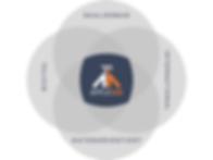 Leadership 4 Circle Venn Diagram.png