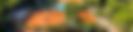 paguea tennis academy Eddie Johansson head väskortennisprodukter tennis sollentuna norrort tennisträning shop wilson prince balbolat nike skor kläder strängning bra priser bollar tennishall edsviken näsbypark TAP