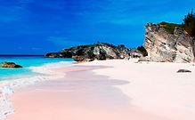 Bermuda 2019 1.jpg