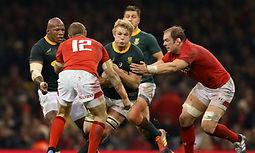 Wales v South Africa RWC 2019 (2).jpg
