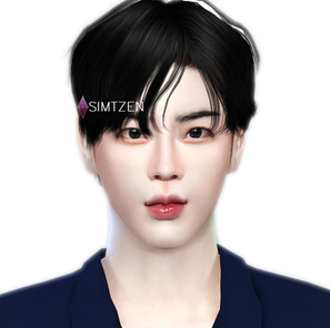 The Sims 4 : Kim Seokjin BTS [CC List]